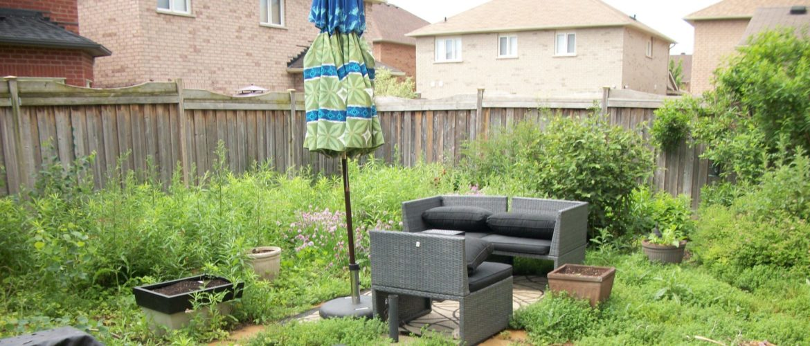 Before: Backyard Suburban Garden & Turf Landscape Design GTA | Turf Design by Terra-Opus
