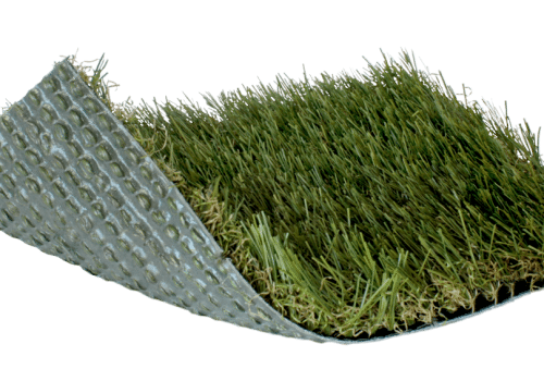 SoftLawn® Select Fescue