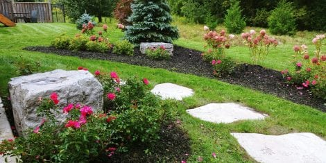 Mount Albert Sloped Landscape Design